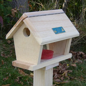 Bird feeders free plans bird feedersbird feeders for Simple bird feeder plans for kids