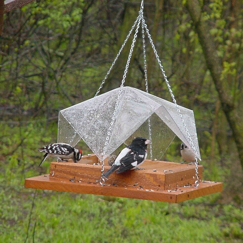 ornament outdoor park wooden bird free feeder images table shed furniture wood tray en feeding folk art photo birds sculpture structure