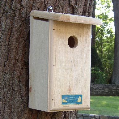 Titmouse Prothonotary Warbler And Tree Swallow House