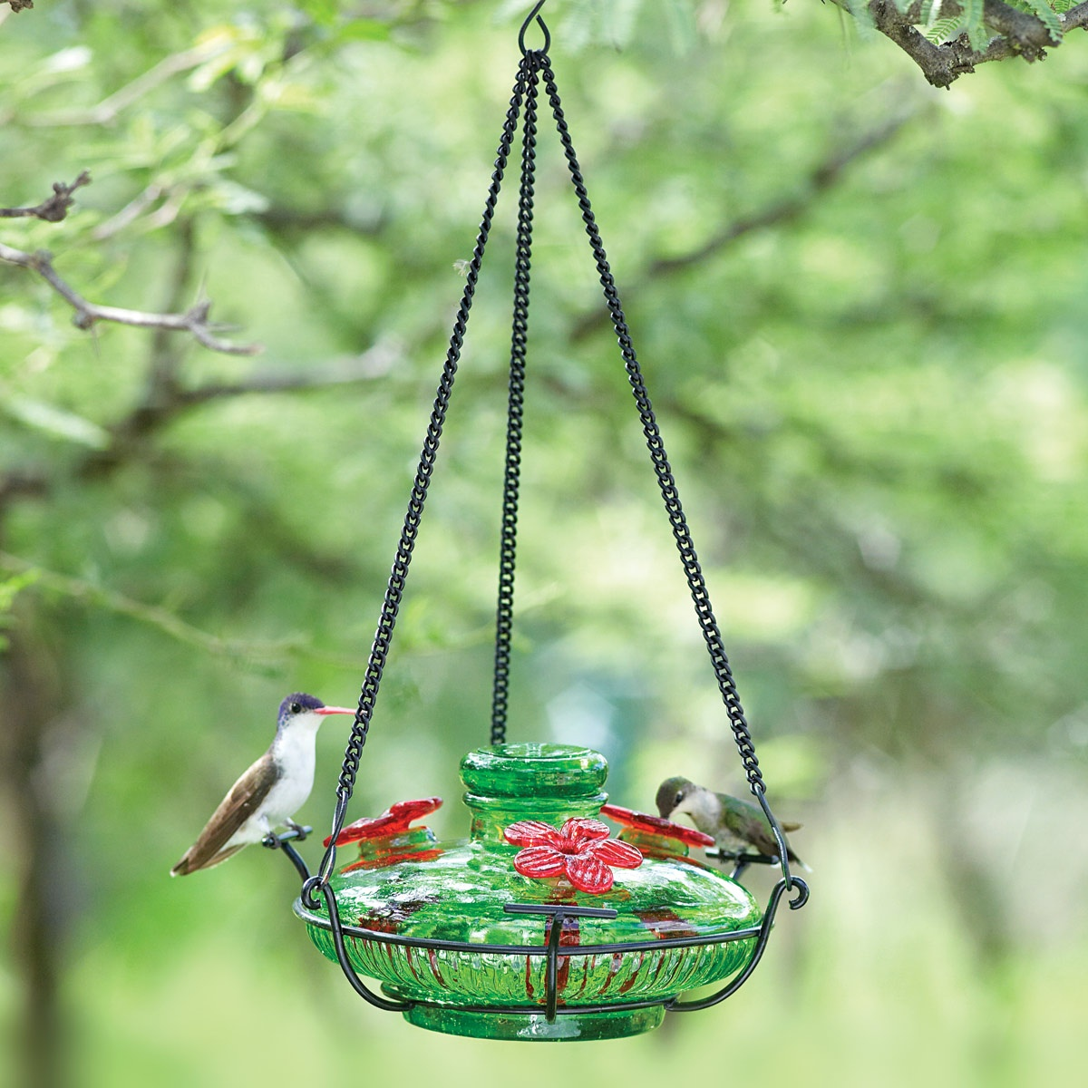 sale full feeder glass window cool feeders for decorative image blown amazon impressive wbu hummingbird