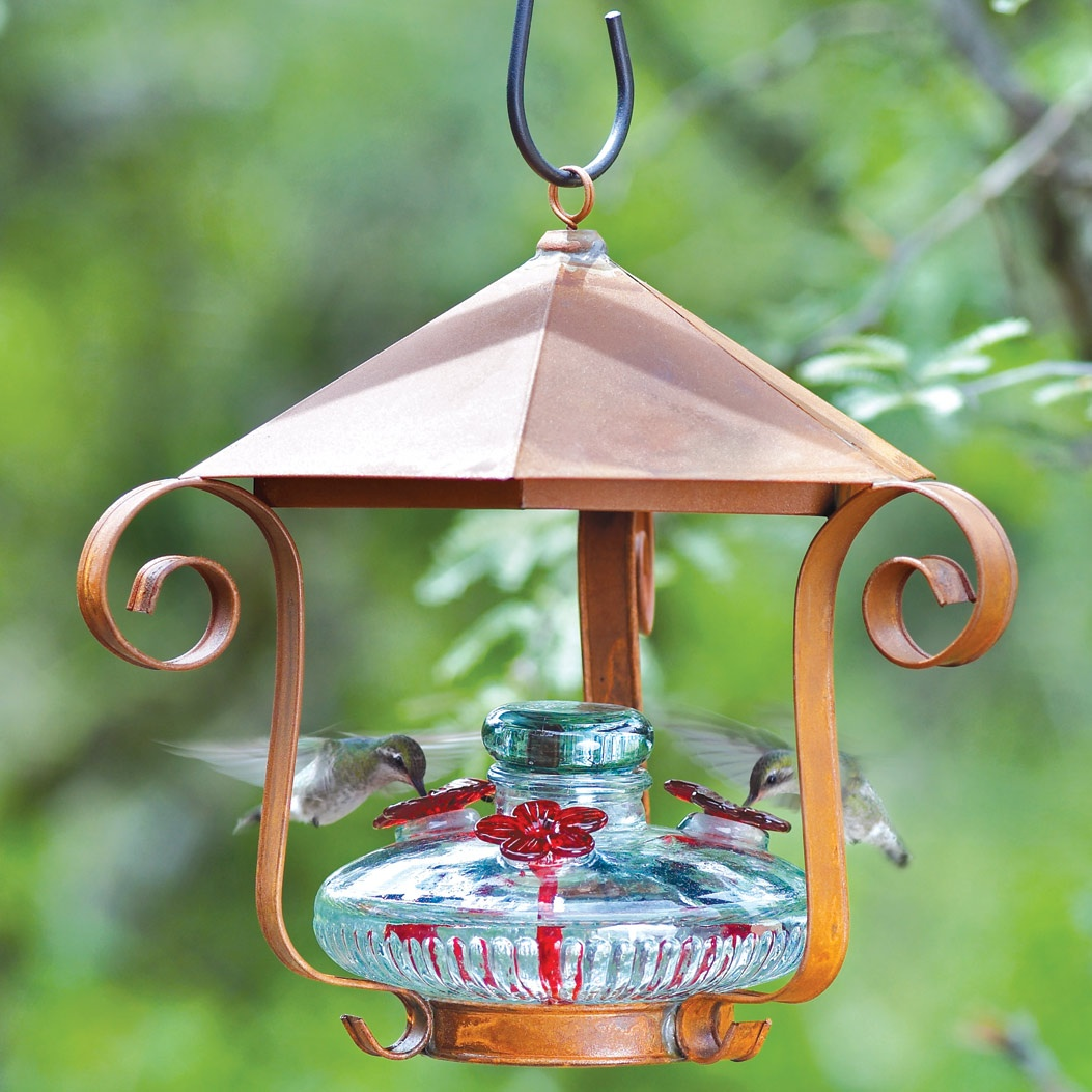 dp glass hummingbird sale pet perky vintage amazon feeders hobnail for cranberry com feeder garden outdoor