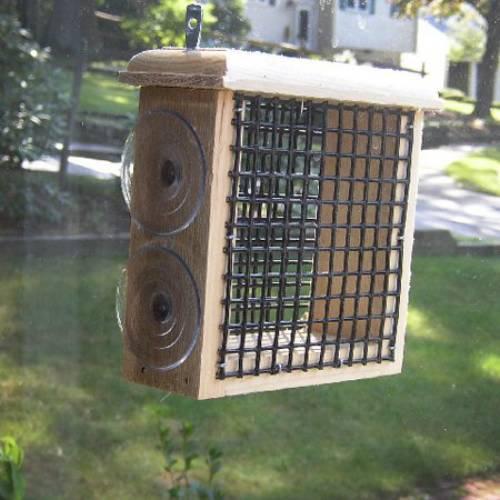 Suet window bird feeder yard envy for How to make suet balls for bird feeders