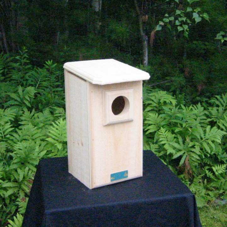 Saw Whet Owl And Screech Owl House Yard Envy
