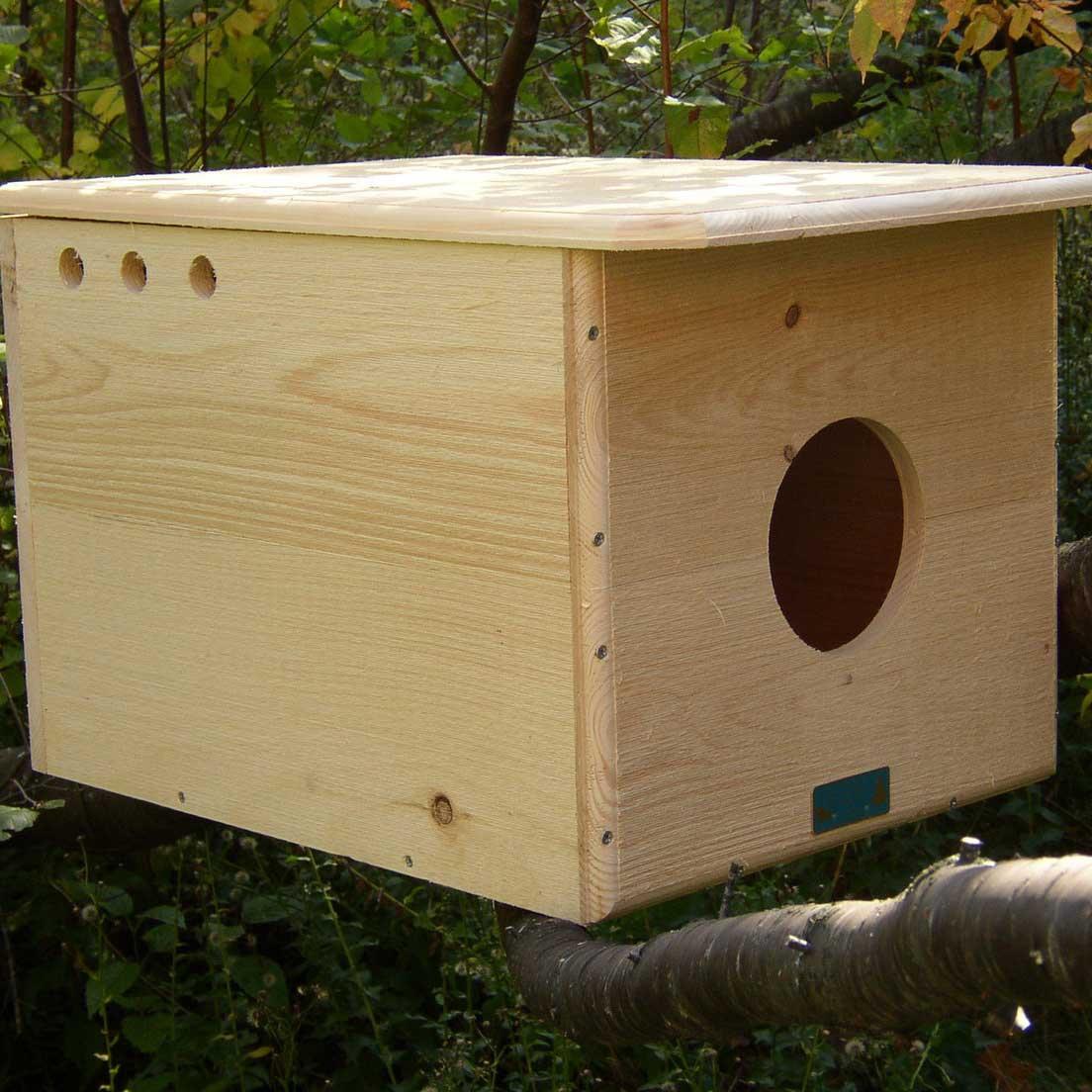 Barn Owl House Yard Envy
