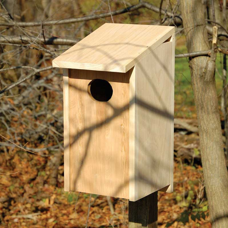 Wood Duck Joy Box Yard Envy