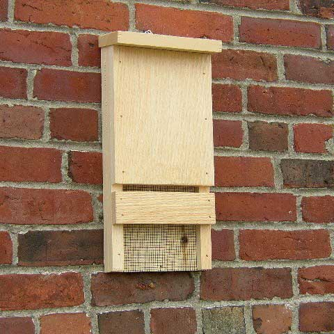 Mini Bat House Yard Envy