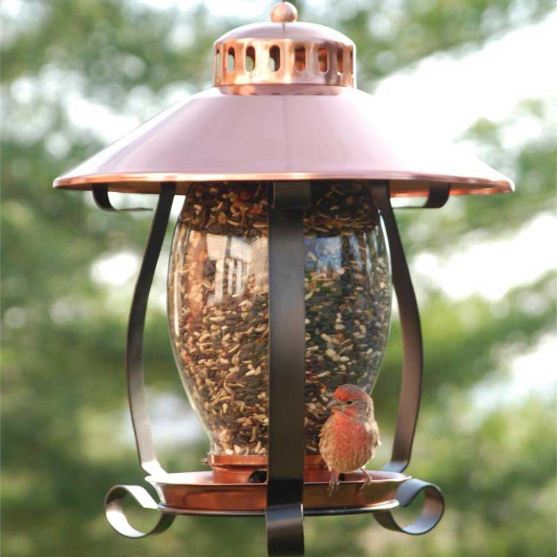 Coppertop Lantern Bird Feeder Yard Envy