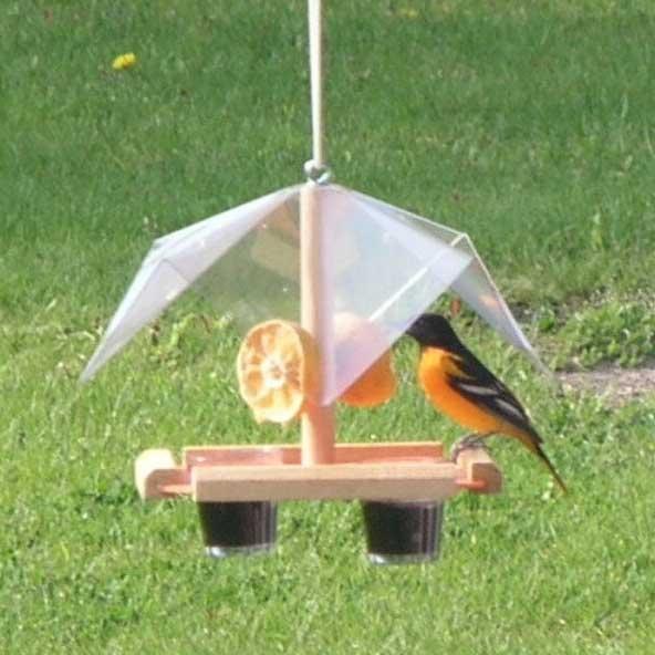 oriole buffet bird feeder