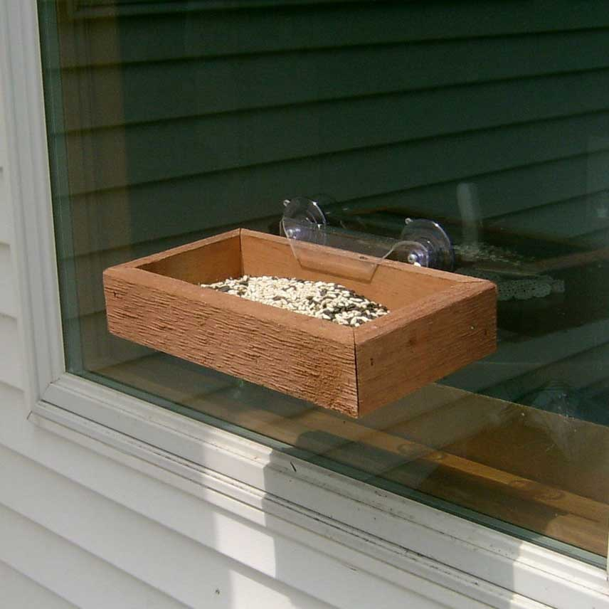 Window Tray Bird Feeder Yard Envy