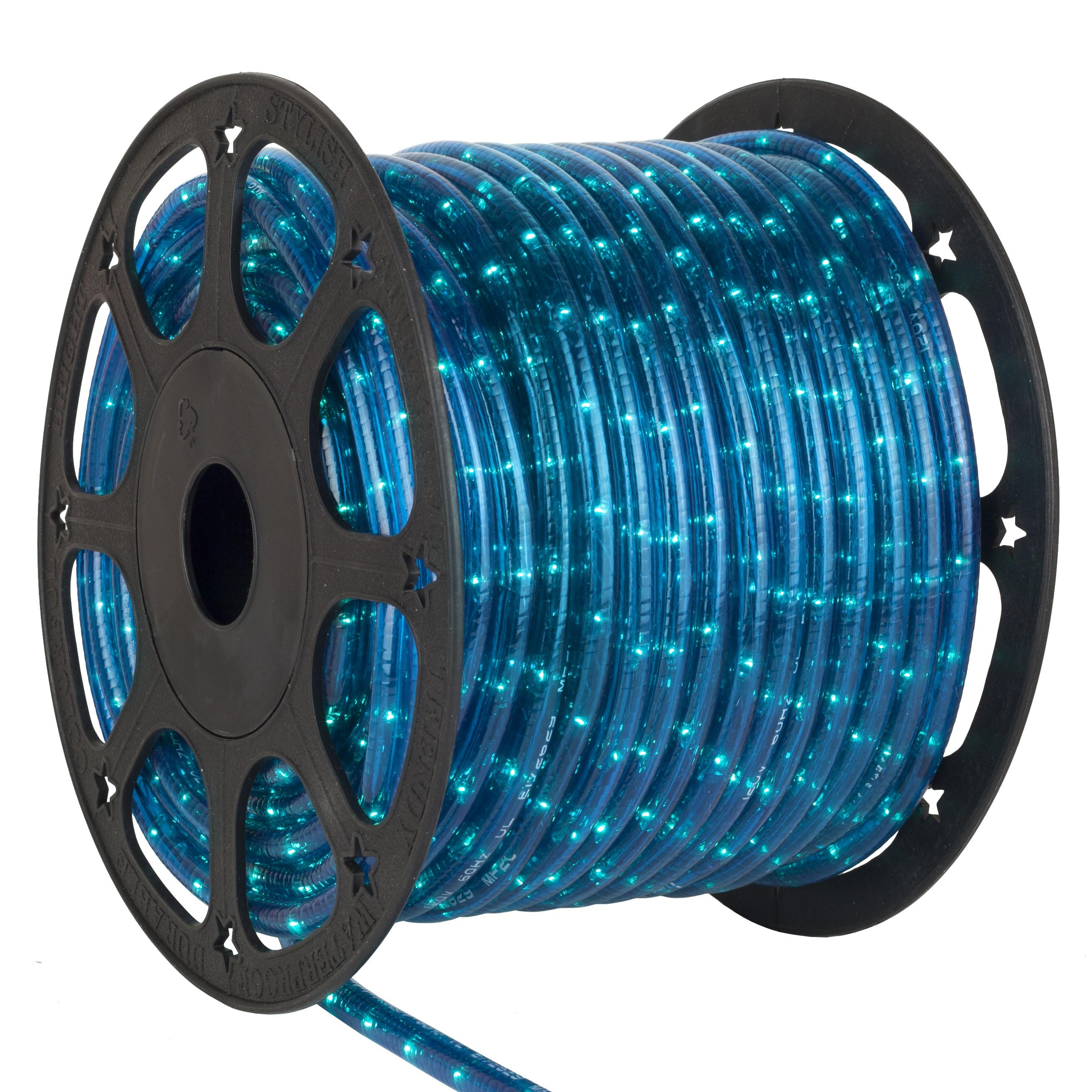 blue rope lights 12 volt yard envy