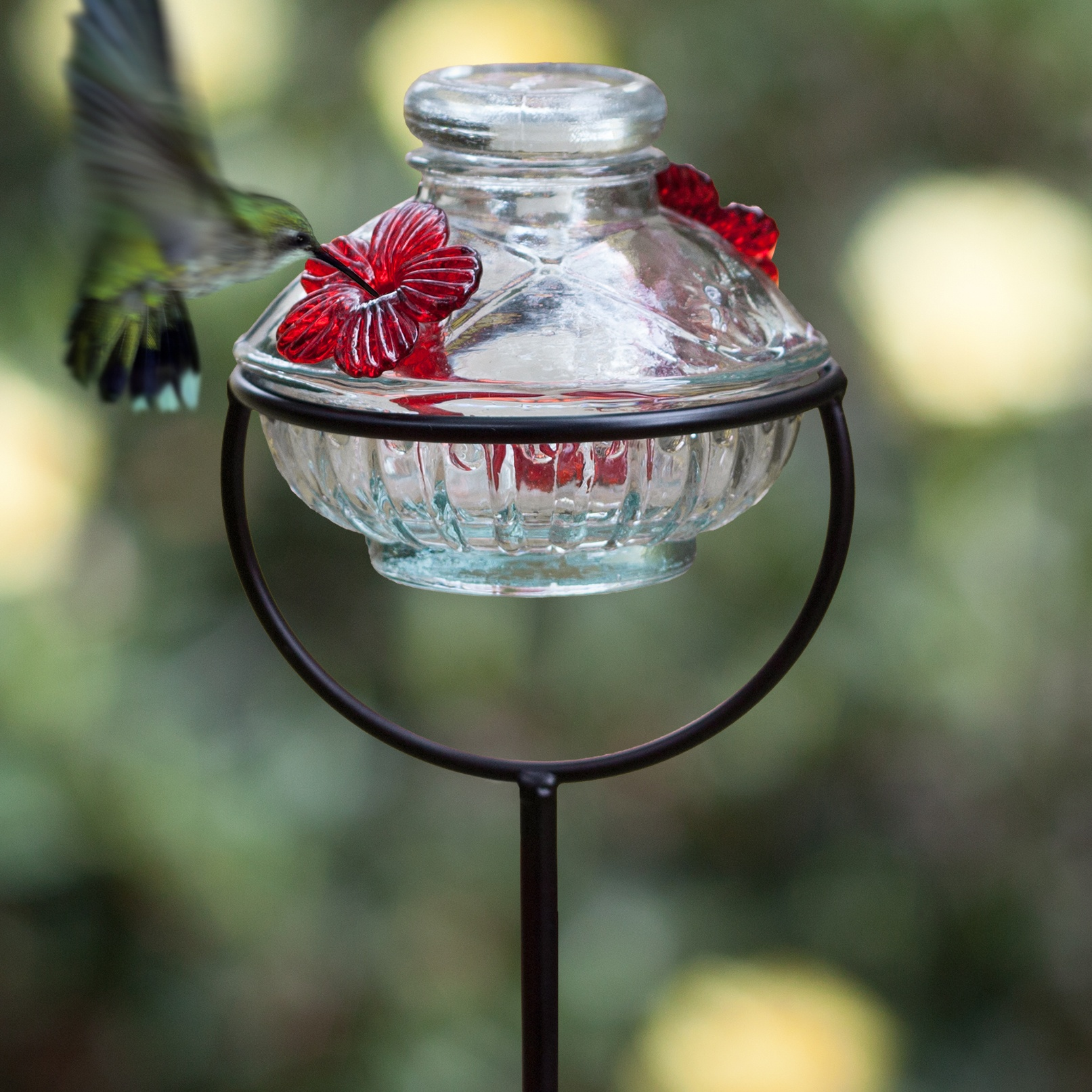 sale pet com hummingbird perkypet perky elegant us feeders bf for copper glass model feeder