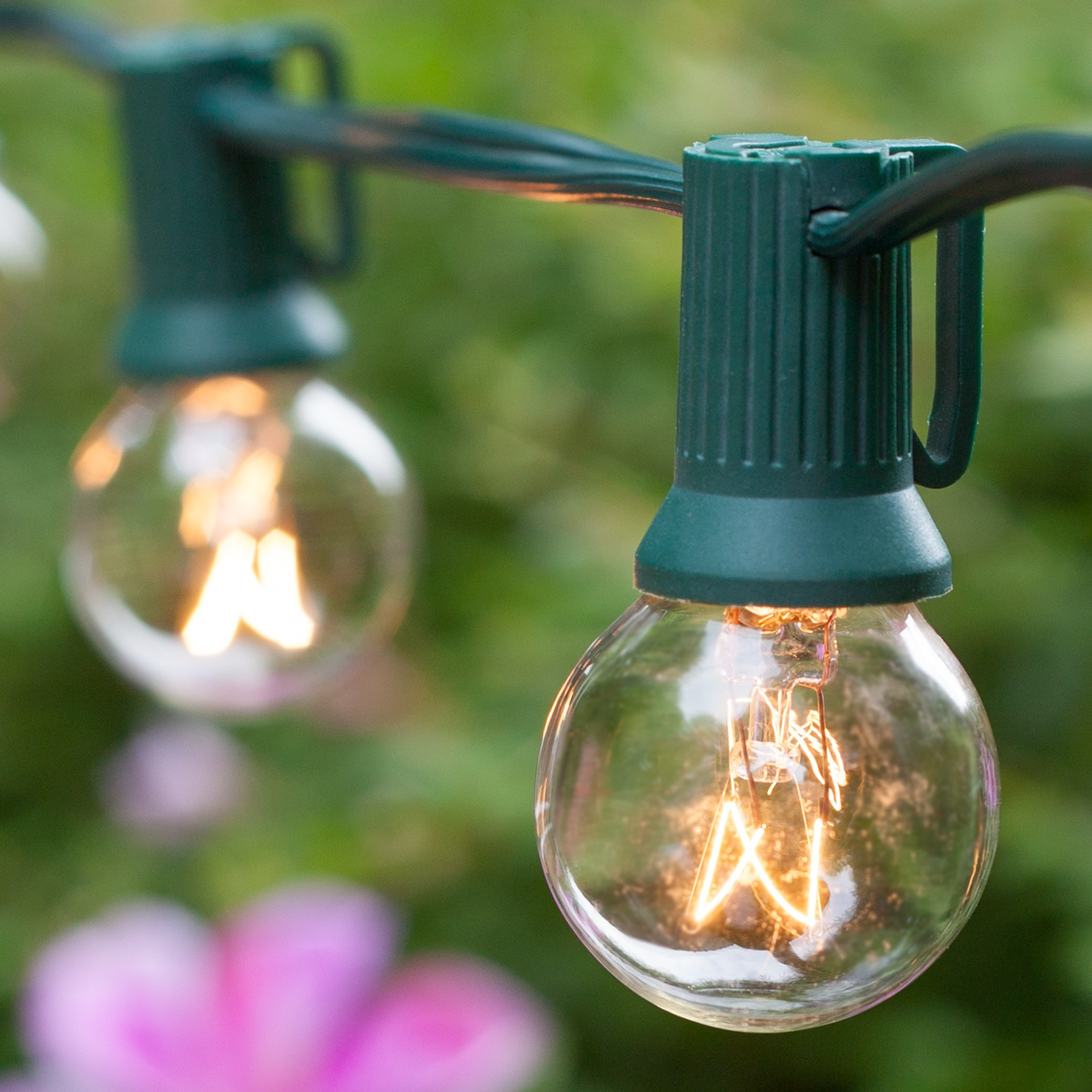 Globe String Lights, Clear G30 Bulbs, Green Wire - Yard Envy