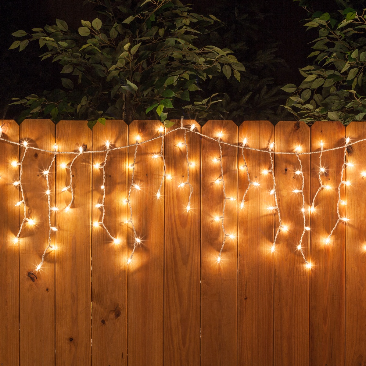Clear-Mini-Icicle-Lights-White-Wire-Fence-7861 Backyard Ideas With Palm Trees on backyard ideas with dogs, backyard ideas with bamboo, small backyard with palm trees, backyard ideas with ducks, backyard ideas with fruit trees, backyard ideas with sand, backyard ideas pine trees, backyard ideas with cactus, backyard ideas with shells, backyard ideas with rocks, backyard ideas with mulch, backyard ideas with hammocks,