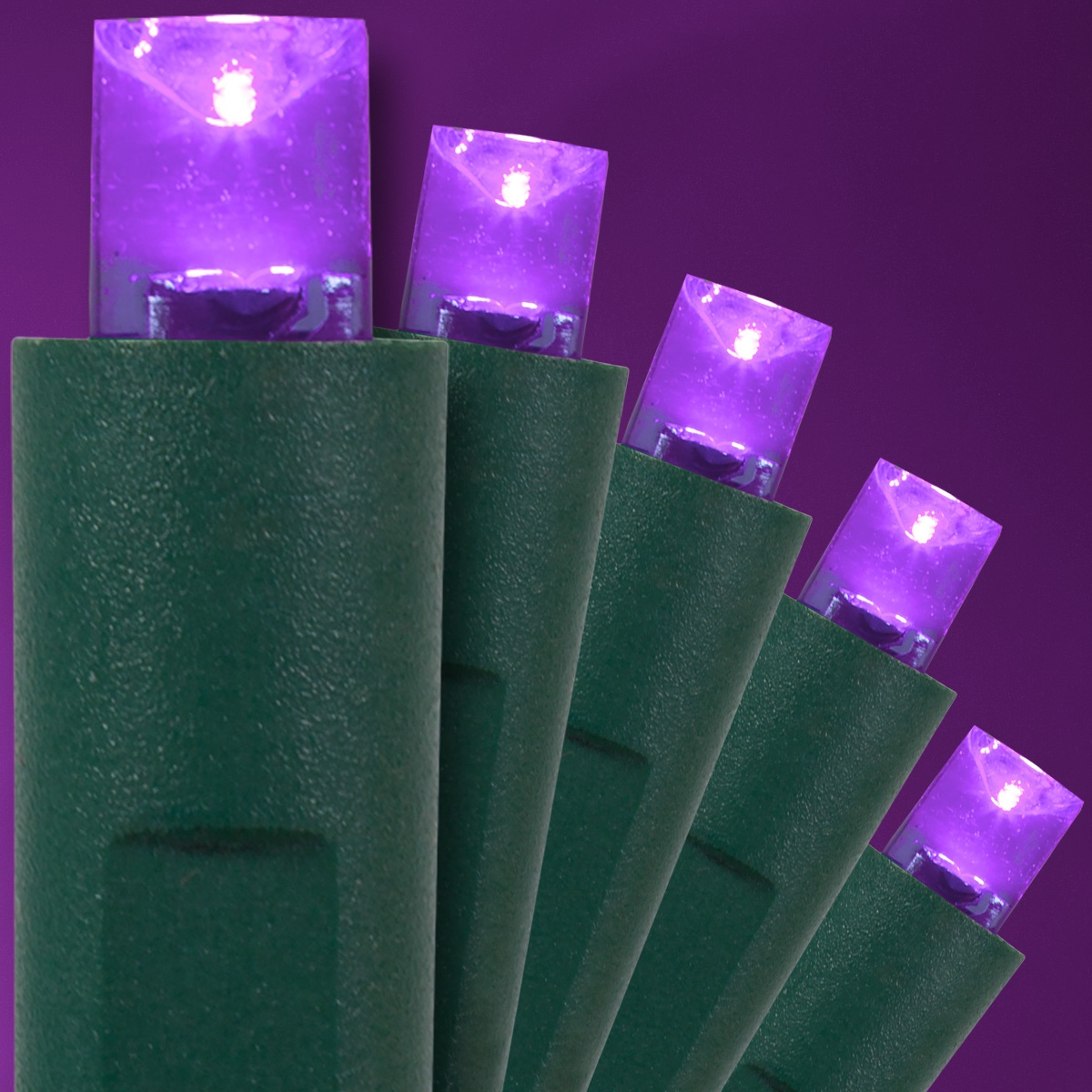 Purple Halloween String Lights, 50 ct, LED Mini - Yard Envy