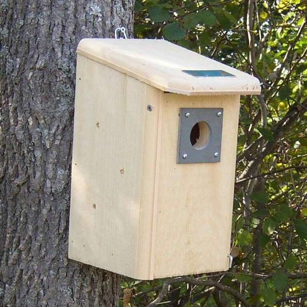 Wooden Bird Houses Yard Envy