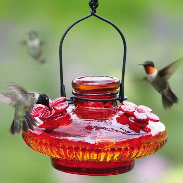 Chickadee Hummingbird Feeder Hummingbird Feeders Yard