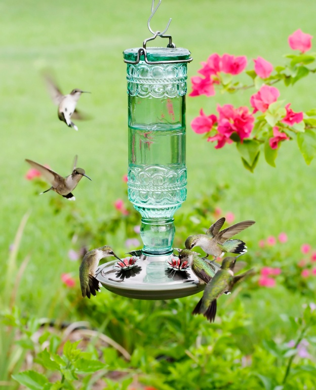 hanging teacup bird feeder instructions