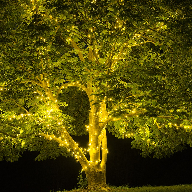 Tree Lights For Spring And Summer