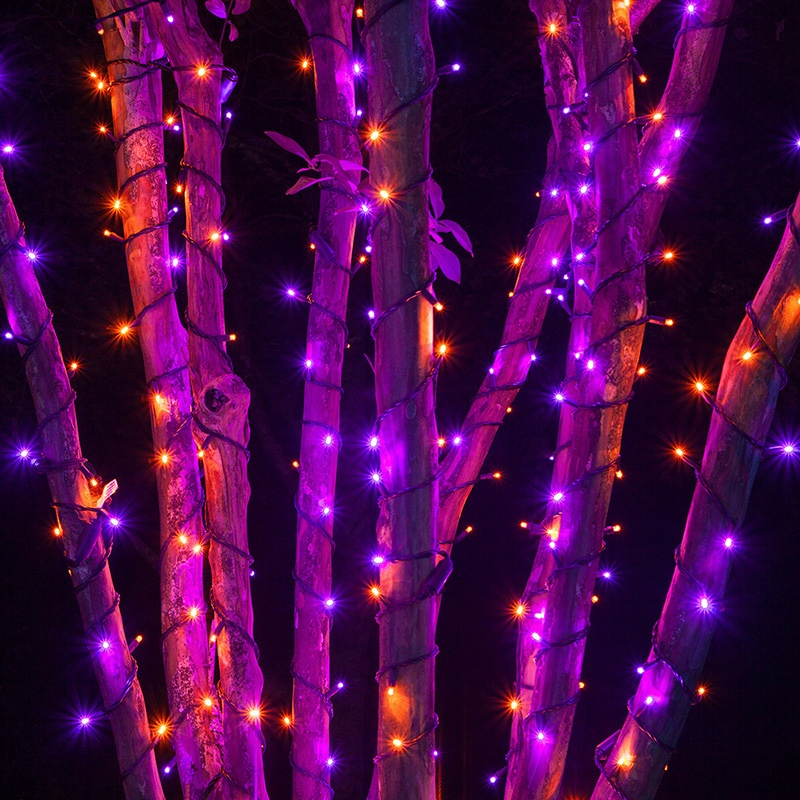 halloween lights yard envy - Halloween Outdoor Lights